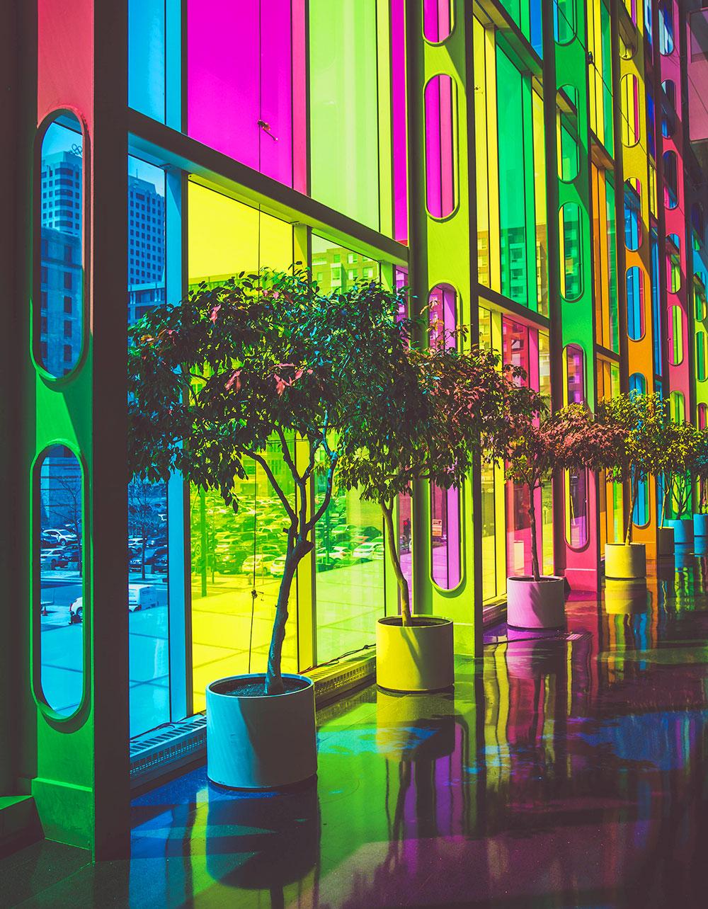 Plants inside building